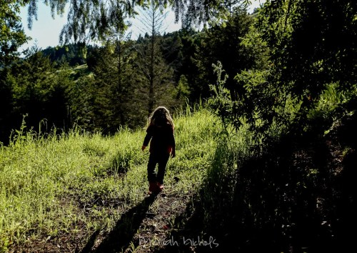 child walking through trees with sunlight on her, back to camera