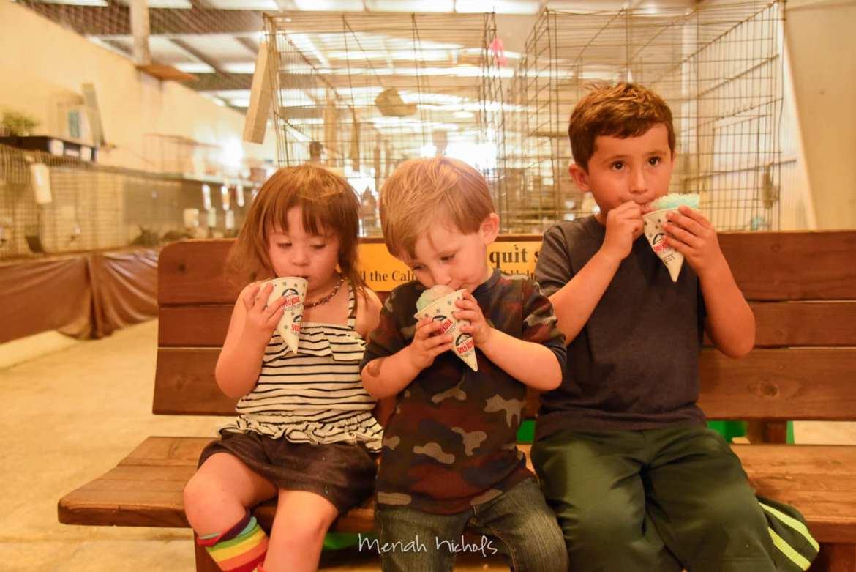 Meriah Nichols Humboldt County Fair-5