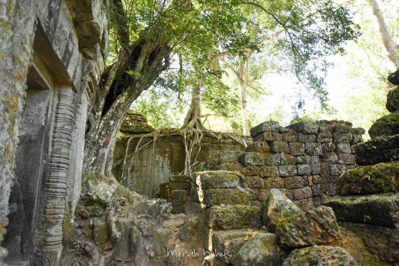 Meriah Nichols Ta Prohm Angkor Wat -15