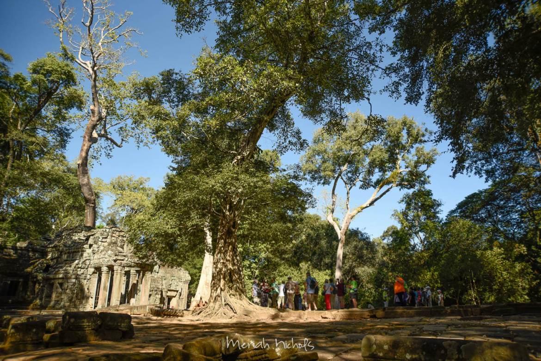 Meriah Nichols Ta Prohm Angkor Wat -31