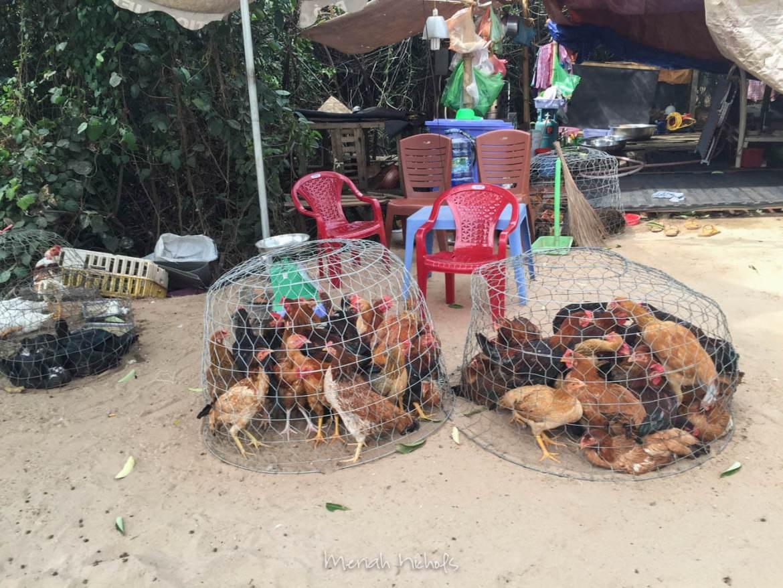 Meriah Nichols Phu Quoc Island Vietnam-7-2