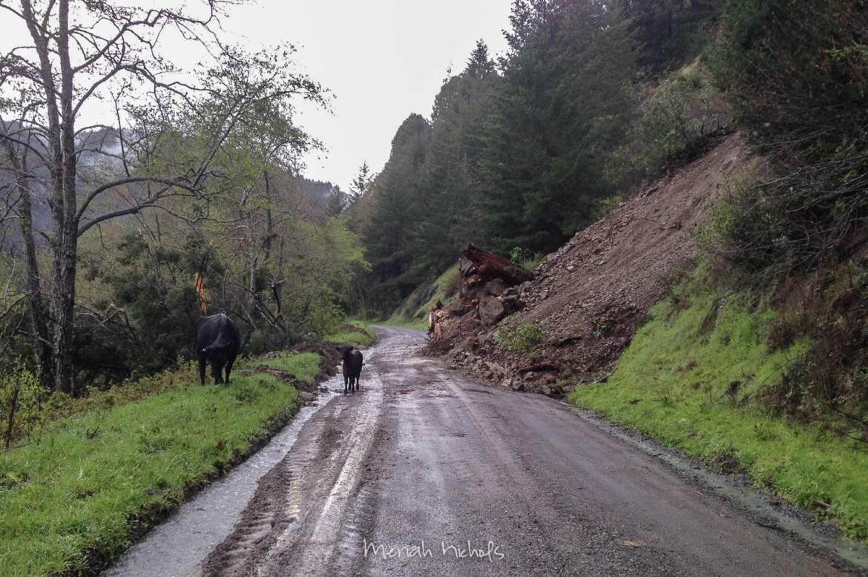 landslide cleared