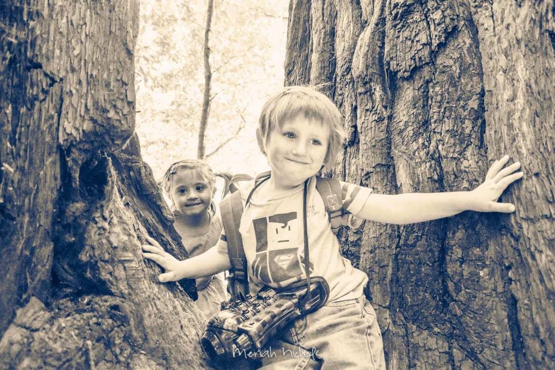 Meriah Nichols Redwoods-1