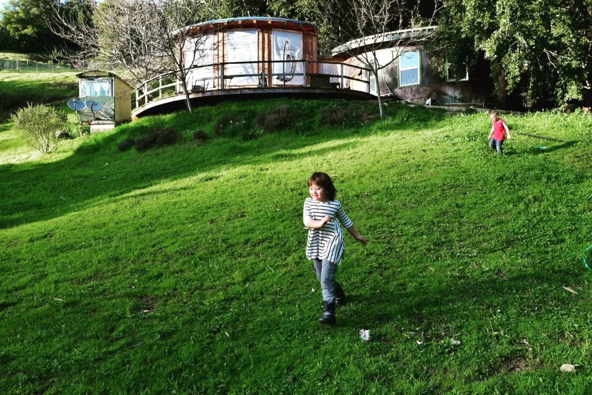 Moxie, running at home on The Lost Coast