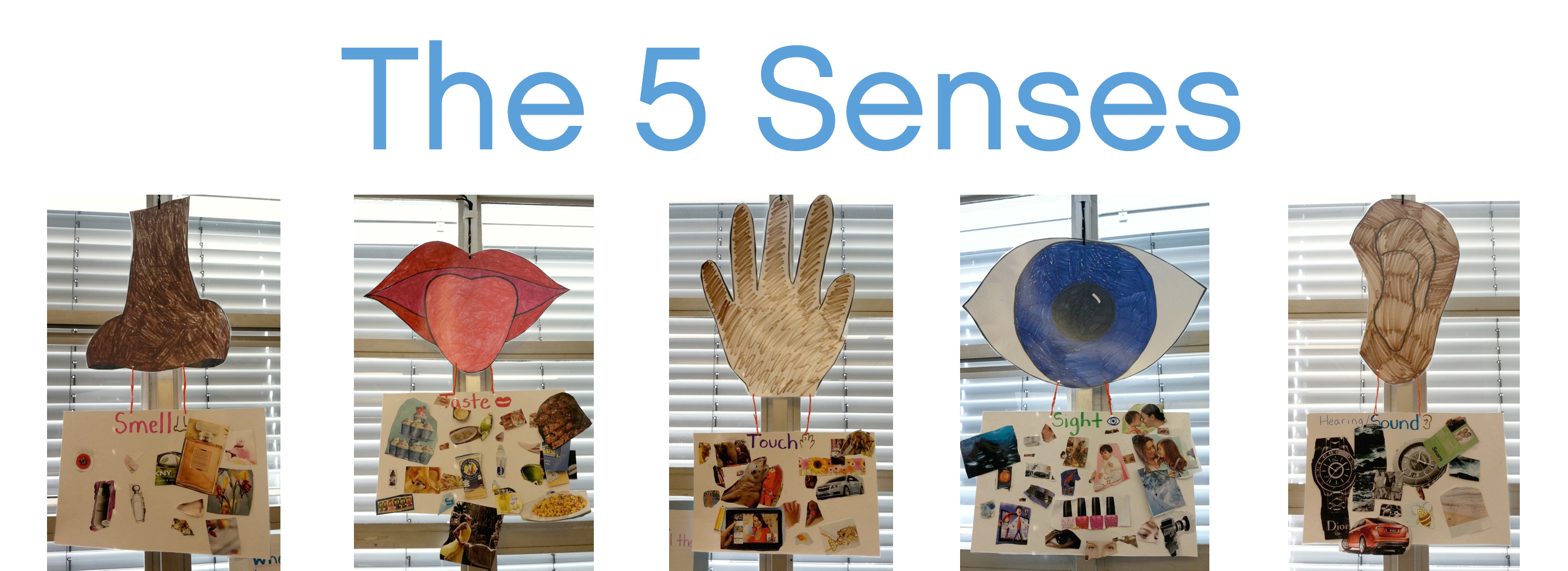 Kindergarten And The Five Senses