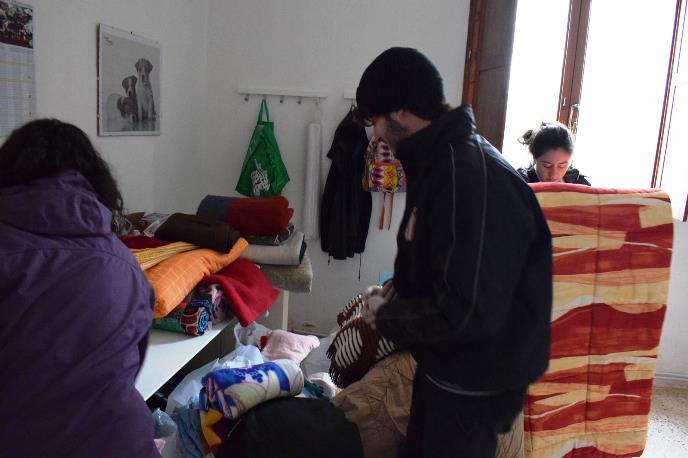 Canile Di Macerata: Donate Coperte Da Tutte Le Marche