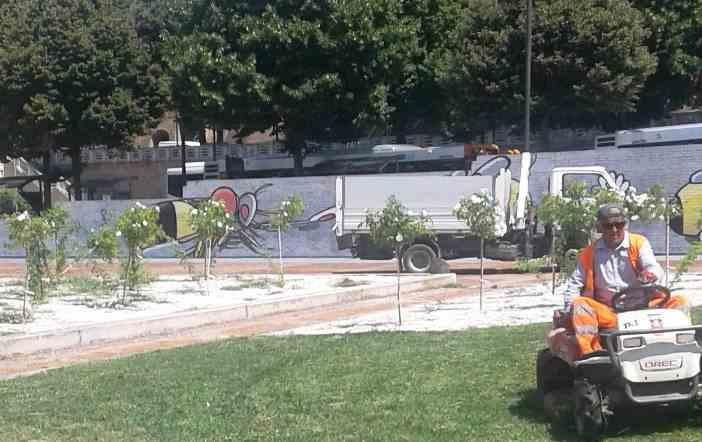 Taglio Erba E Sistemazione Giardini Diaz Macerata