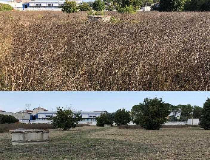 Prima E Dopo Intervento Area Depuratore APM Morrovalle