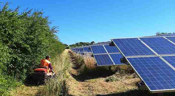 Manutenzione Verde Impianto Fotovoltaico
