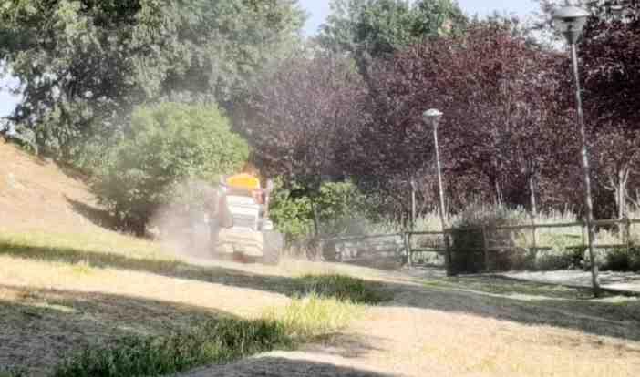 Manutenzione Verde Villa Fermani Corridonia