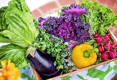 vegetables-790022_1920sm