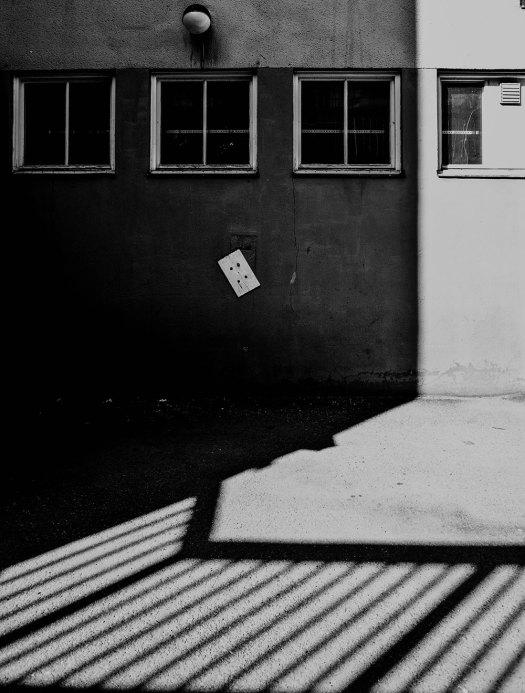 svartvitt-skugga-platta