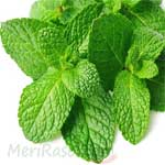 Mint-Leaves-पुदीना-Pudina-Spices-Names-in-English-Hindi-Meri-Rasoi
