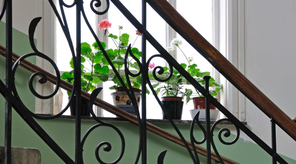 Staircase Railing Styles That Will Elevate Your Design Merit   Wrought Iron Handrails For Outdoor Steps   Patio   Deck   Rustic Iron   Contemporary   Pipe