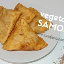Vegetable Samosa wrap