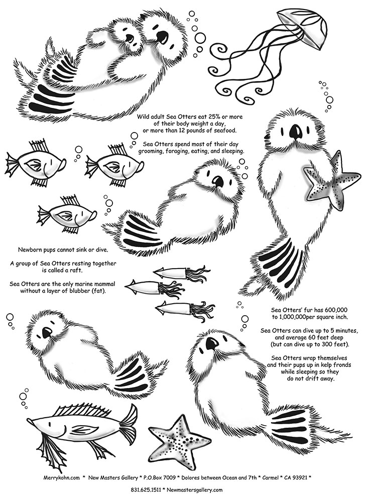 sea hallow ideas