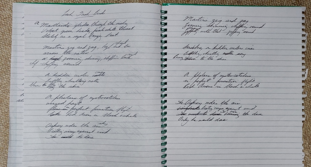 Drafts of poetry in Merryn Glover's notebook
