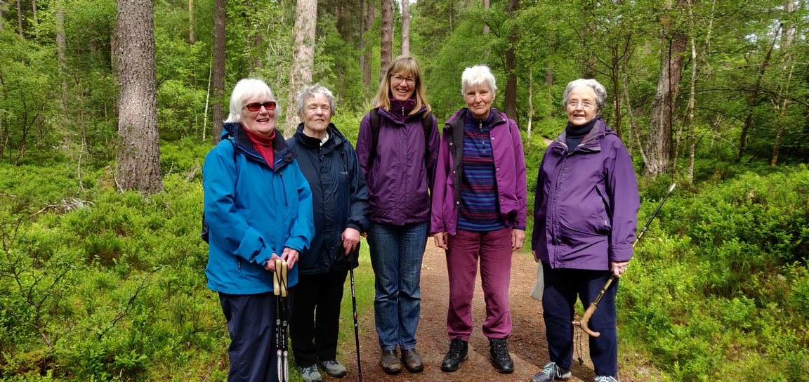Five women standing together in woodland