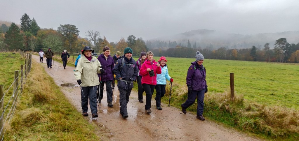 Group walking in drizzle