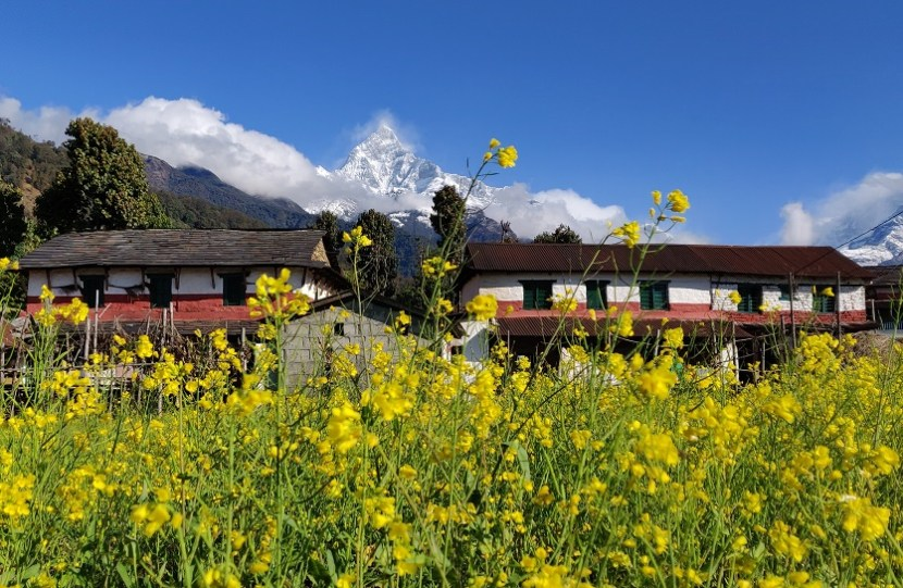 Gurung village under Fishtail Mountain in Nepal