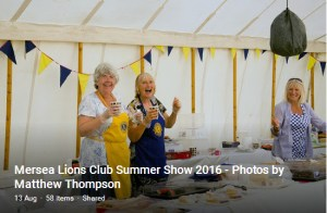 summer-show-2016-link-image