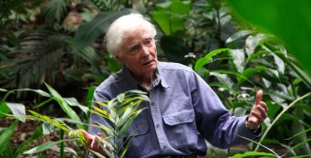 Merwin Documentary – TV Debut is May 28 on PBS Hawaii