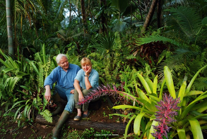 10833-4 - William & Paula, W.S. Merwin's garden, Haiku (Maui), HI