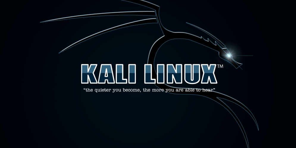 "Machine virtuelle – Linux Kali 2017.3 light<span class=""rating-result after_title mr-filter rating-result-873"" itemscope itemtype=""http://schema.org/AggregateRating"">	<span class=""mr-star-rating"">			    <i class=""fa fa-star mr-star-full""></i>	    	    <i class=""fa fa-star mr-star-full""></i>	    	    <i class=""fa fa-star mr-star-full""></i>	    	    <i class=""fa fa-star mr-star-full""></i>	    	    <i class=""fa fa-star mr-star-full""></i>	    </span><span class=""star-result"">	<span itemprop=""ratingValue"">5</span>/<span itemprop=""bestRating"">5</span></span>			<span class=""count"">				(<span itemprop=""ratingCount"">1</span>)			</span>			<span itemprop=""itemReviewed"" itemscope itemtype=""http://schema.org/Thing""><meta itemprop=""name"" content=""Machine virtuelle - Linux Kali 2017.3 light"" /></span></span>"