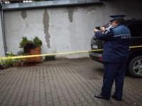 Poliția va include în ancheta ursului împușcat imagini suprinse de o cameră de supraveghere de pe Calea Dumbrăvii | VIDEO