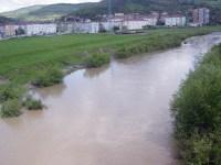 Râul Târnava Mare, în apropiere de Mediaș