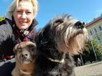 O olandeză mărșăluiește peste 2.000 de kilometri pentru câinii fără stăpân din România