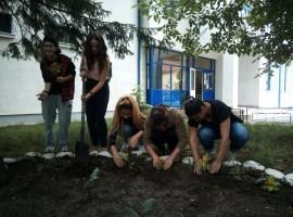 Elevii și studenții au dovedit că iubesc Sibiul