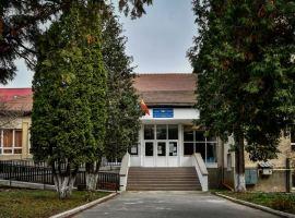 "Școala Gimnazială ""Radu Selejan"""