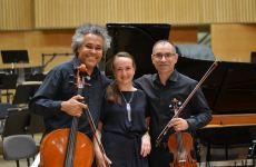 Sonată compusă de Beethoven pentru o contesă din Arad – în concert online