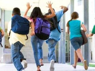 Andronescu vrea vacanţe mai scurte și examene de evaluare națională și BAC mai devreme