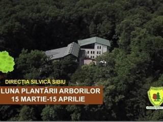 """""""Luna plantării arborilor"""" – 2019 s-a încheiat, campania de împădurire continuă (P)"""