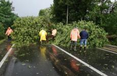 Furtuna a făcut ravagii la Tălmaciu şi Tălmăcel