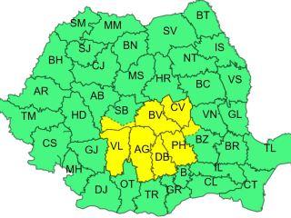 Cod galben de vijelii în zona de munte a județului Sibiu