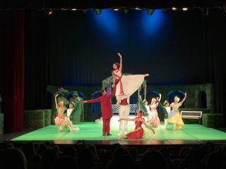 Operetă și spectacol de balet pentru copii, propunerile Sibiu Opera Festival pentru acest weekend