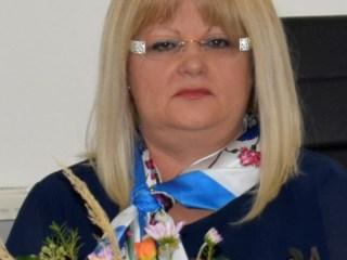Mesajul prefectului judeţului Sibiu cu ocazia Zilei Naţionale a României