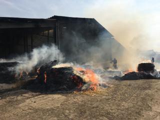 Incendiu la o fermă din Moșna