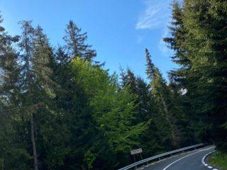 Drumul spre Păltiniș a fost asfaltat pe tronsonul din apropierea schitului. Alte lucrări de reparații