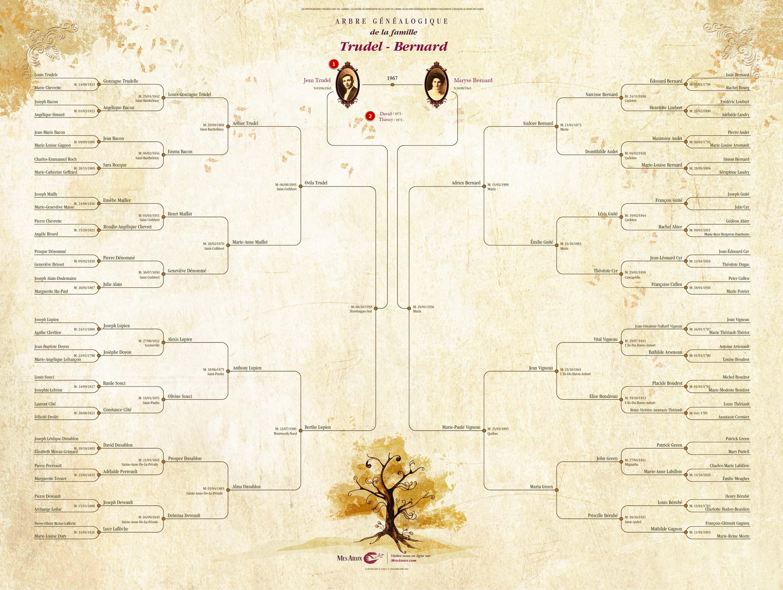 Agrandissement De L Arbre Genealogique 2 En 1 Moderne