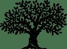 BG tree