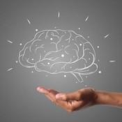 Cerebro dibujado sobre una mano.