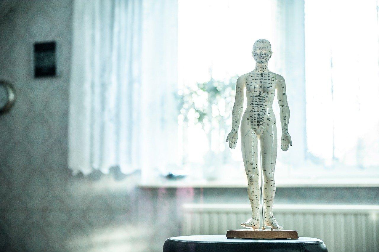 osteopathy, acupuncture, wellness-1207800.jpg