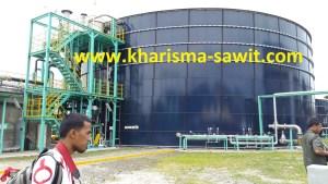 Kenali 4 tahap Pembuatan Biogas dari Limbah Kelapa Sawit