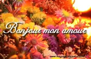 bonjour mon amour