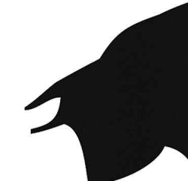 Cabeça de Toiro