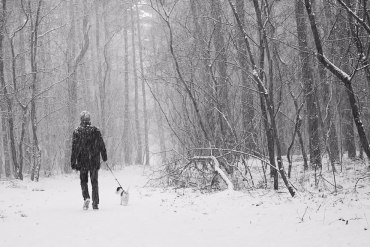 man walking his dog in the snow